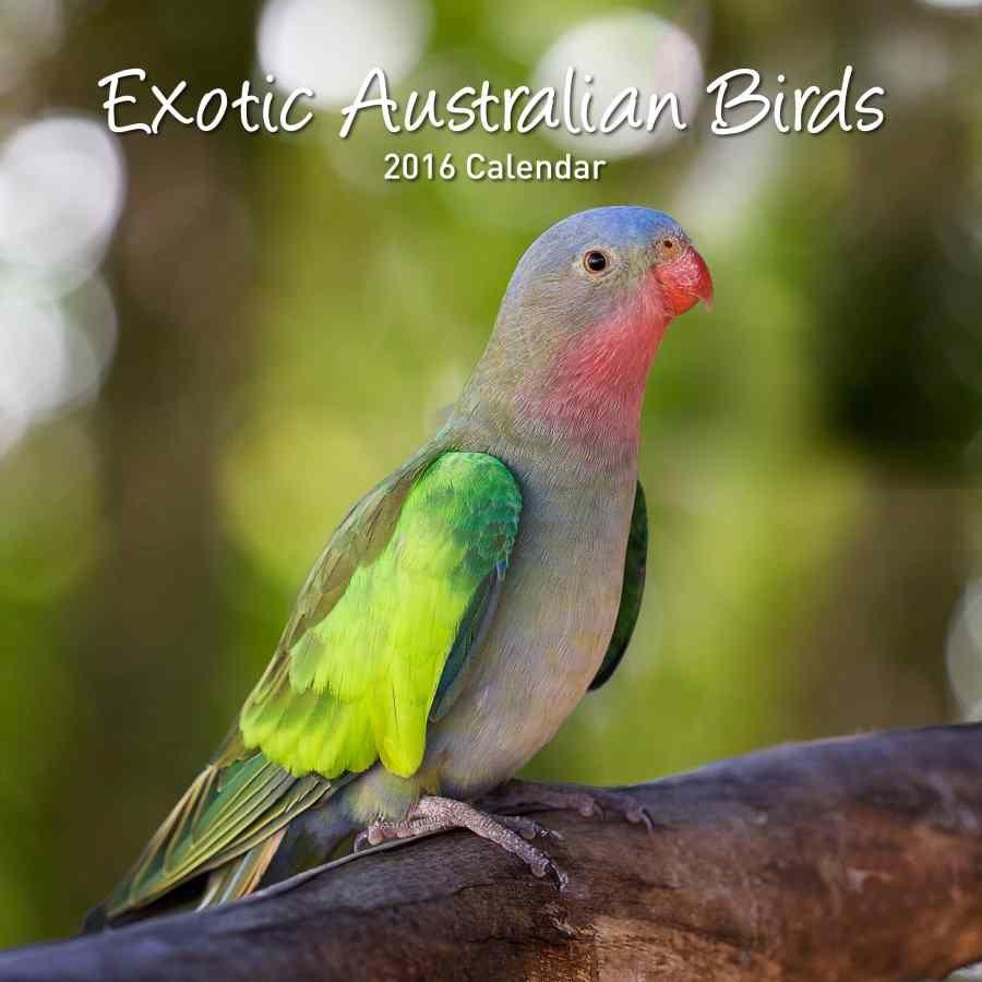 exotic-australian-birds-calendar